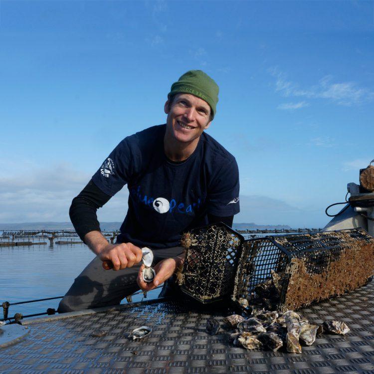 Dan Dollimore opening Kaipara oyster